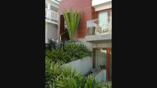 Cycads -- Encephalartos whitelockii installation in Manhattan Beach, California