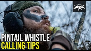 Pintail Whistle | Duck Calling Tips
