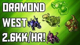 [Tibia Where to Hunt - MS/ED 150+] Oramond West (2.6kk/hr @ 228!)