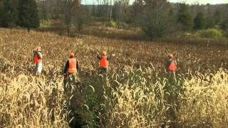 Download Video Wingshooting Safety - Bird Hunting Tip MP3 3GP MP4