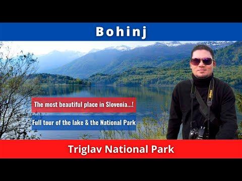 Bohinj, Triglav National Park, Slovenia