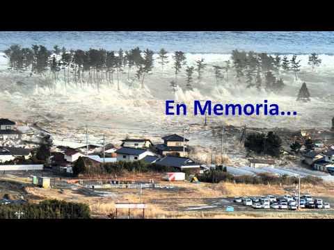 Tsunami Japon en memoria 2012