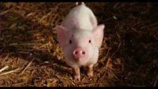 Ordinary Miracle (Charlotte's Web OST) - Sarah McLachlan