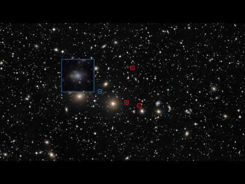 Zoom into Perseus Cluster Dwarf Galaxies [HD]