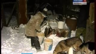 Один из домовв Магадане превратился в будку для собак