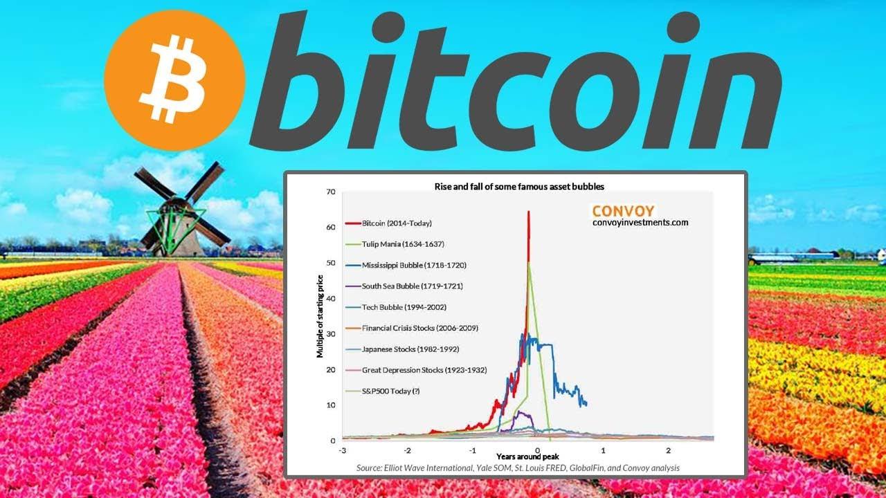 bitcoin bubble or not