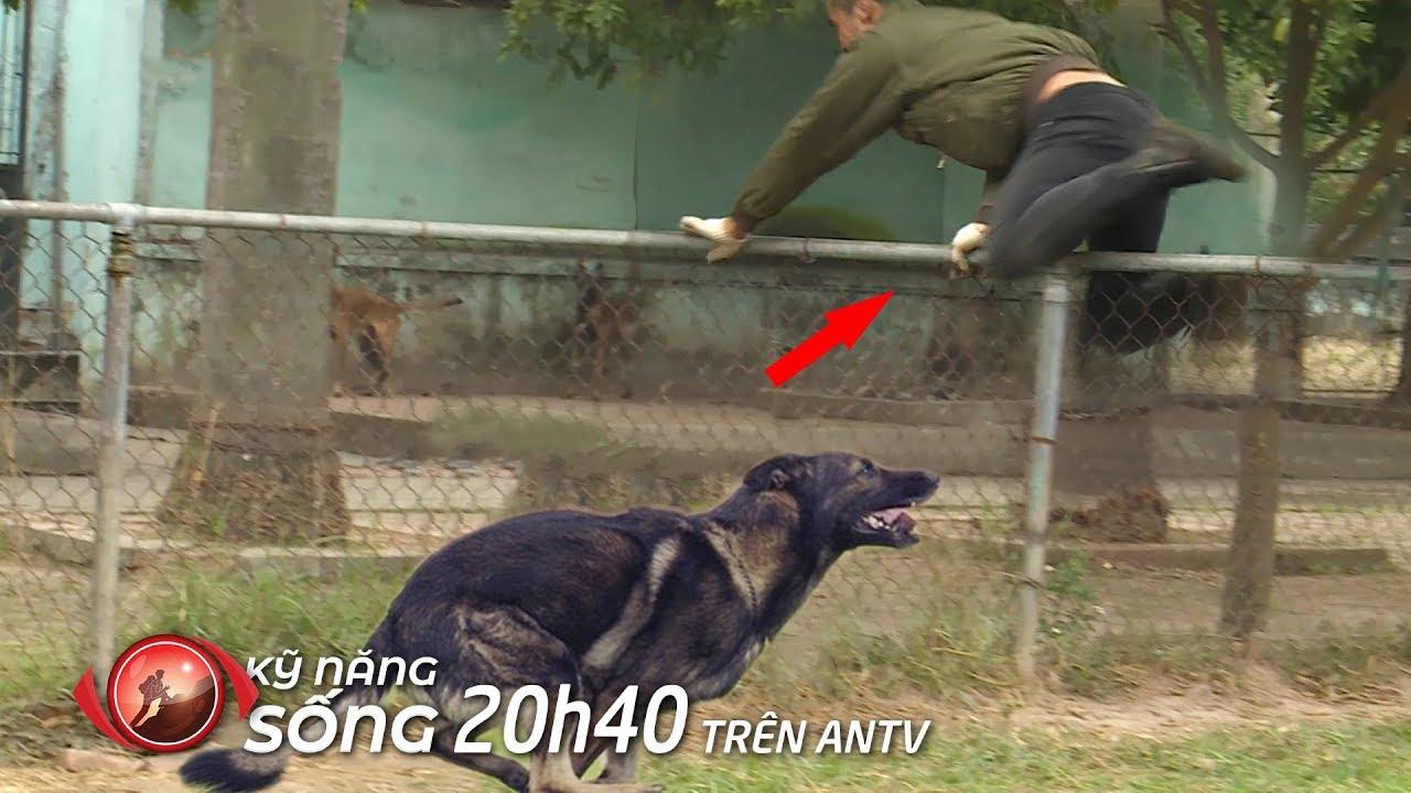 Bị chó đuổi, thanh niên sợ vãi linh hồn bay qua bờ rào thoát hiểm (p2) | Kỹ năng sống [số 17]