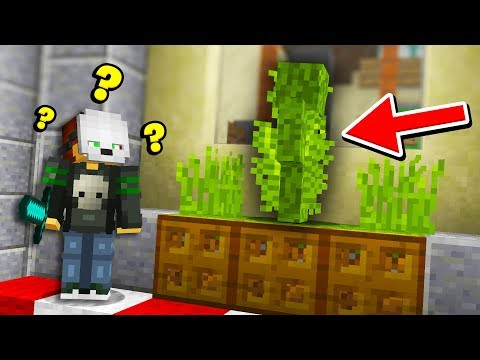 We disguised as TALL GRASS and it ACTUALLY WORKED... (Minecraft Murder Mystery Camo Trolling)