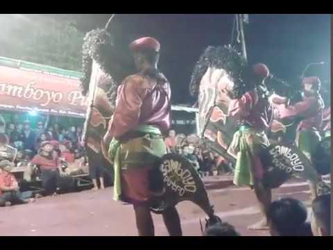 Samboyo putro celeng live gedangan sidoarjo
