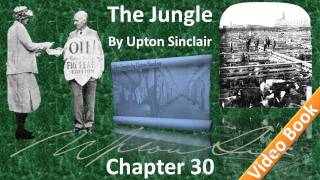 Chapter 30 - The Jungle by Upton Sinclair