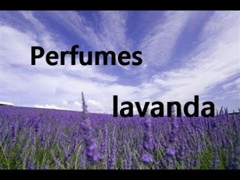 Especial perfumes lavanda