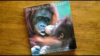 "ORANGUTAN ODYSSEY--Meeting Indonesia's endangered ""People of the Forest"""