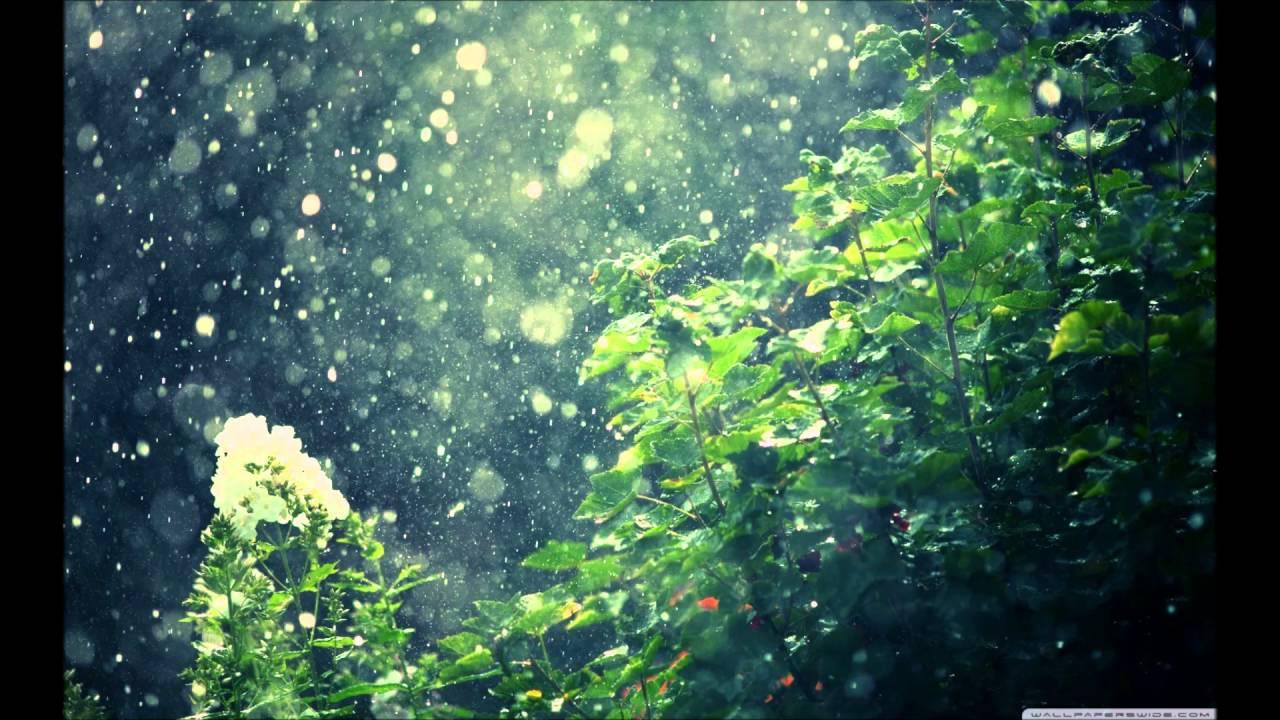 Fall Leaves Wallpaper Macbook Summer Rain All Saints Youtube