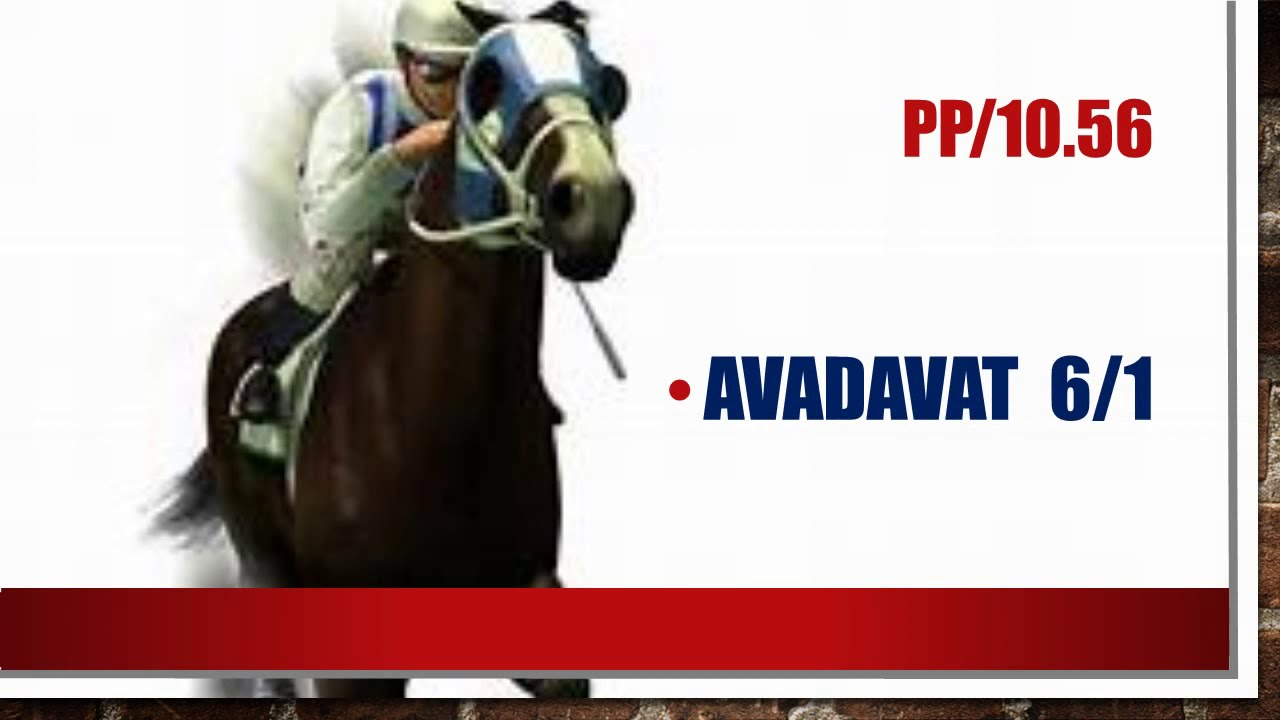 Portman park horse racing betting guide brazil vs italy betting preview goal