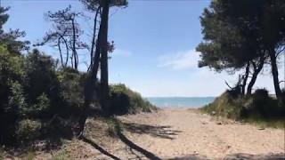 Camping Molino a Fuoco - La Pineta