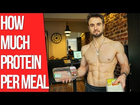 How Much Protein Can Your Body Absorb Per Meal? (30g Per Meal Limit)