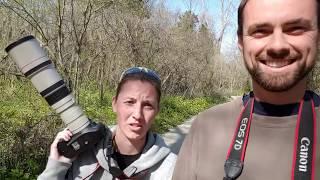 Our Bird Photography Gear (Camera and Lens Advice)