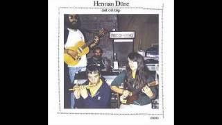 Herman Düne - This Will Never Happen