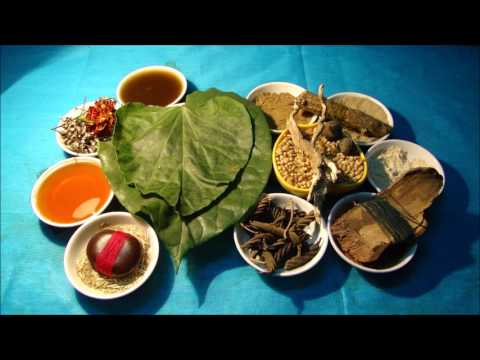 Mouth Cancer Stage 4: Avoid Cassia tora Herbal Tea with these Formulations. Film by Pankaj Oudhia
