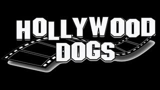 Dog Commercial-hollywood Dogs