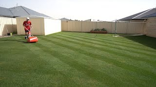 Starting a Lawn From Scratch | Seeding A Lawn
