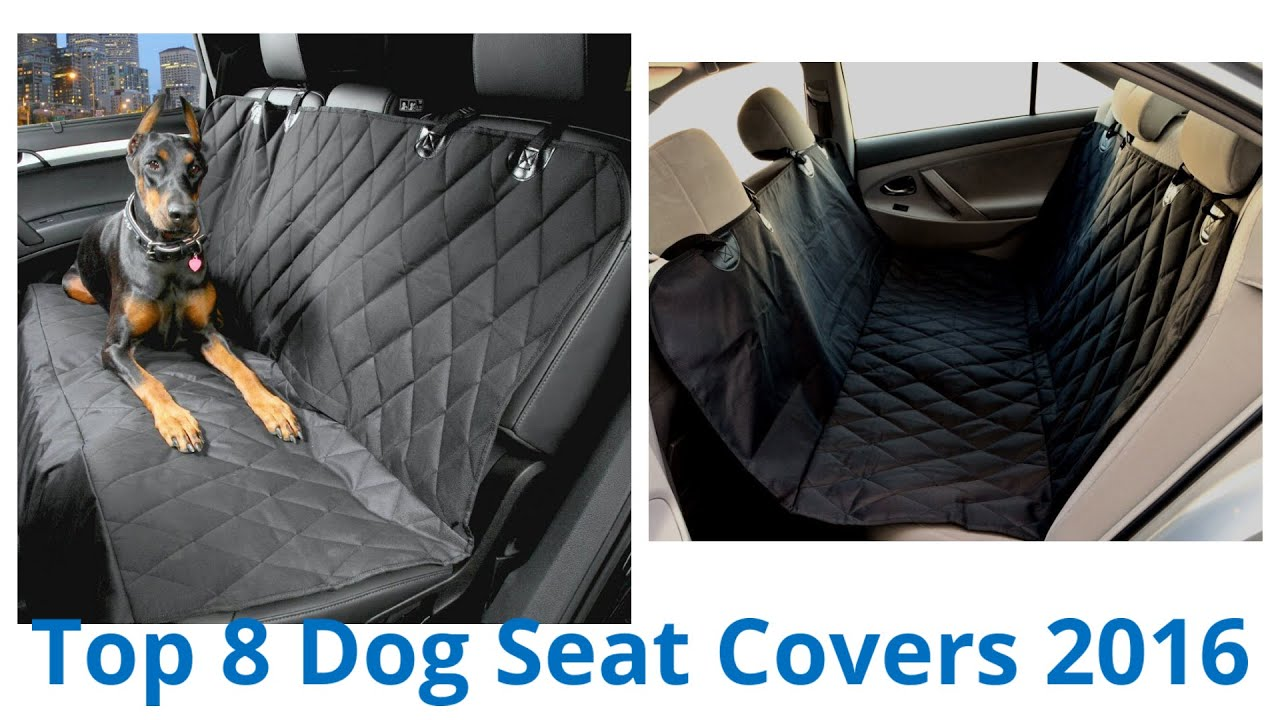 Dog Car Protector >> 8 Best Dog Seat Covers 2016 - YouTube