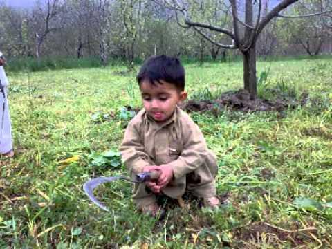 ANEES Khan Of Aghal Matta Swat