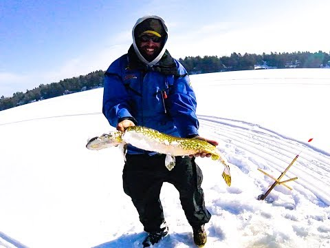 CRAZY FISH CATCH ON MESSOLONSKI LAKE ICE FISHING IN MAINE