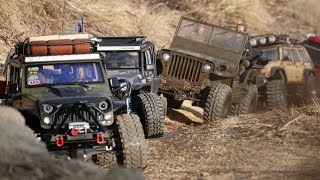 Off Road Trail With A.D.R.C │ Jeep Willys_Rubicon x 3_Cherokee_Bronco_Defender