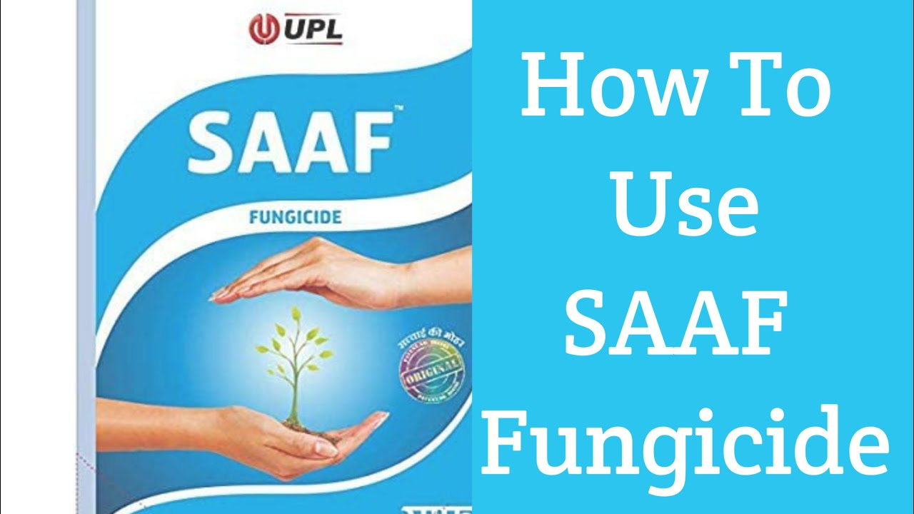 Download How to use saaf fungicide   best fungicide for plants   UPL SAAF fungicide