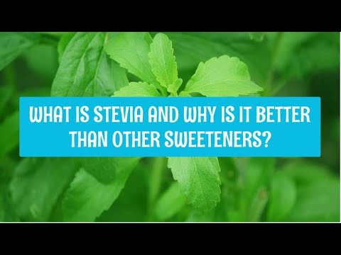 what-is-stevia-and-why-is-it-better-than-other-sweeteners?