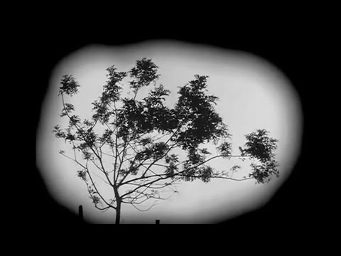 EVERYTHING WILL BE OK - by DON HERTZFELDT