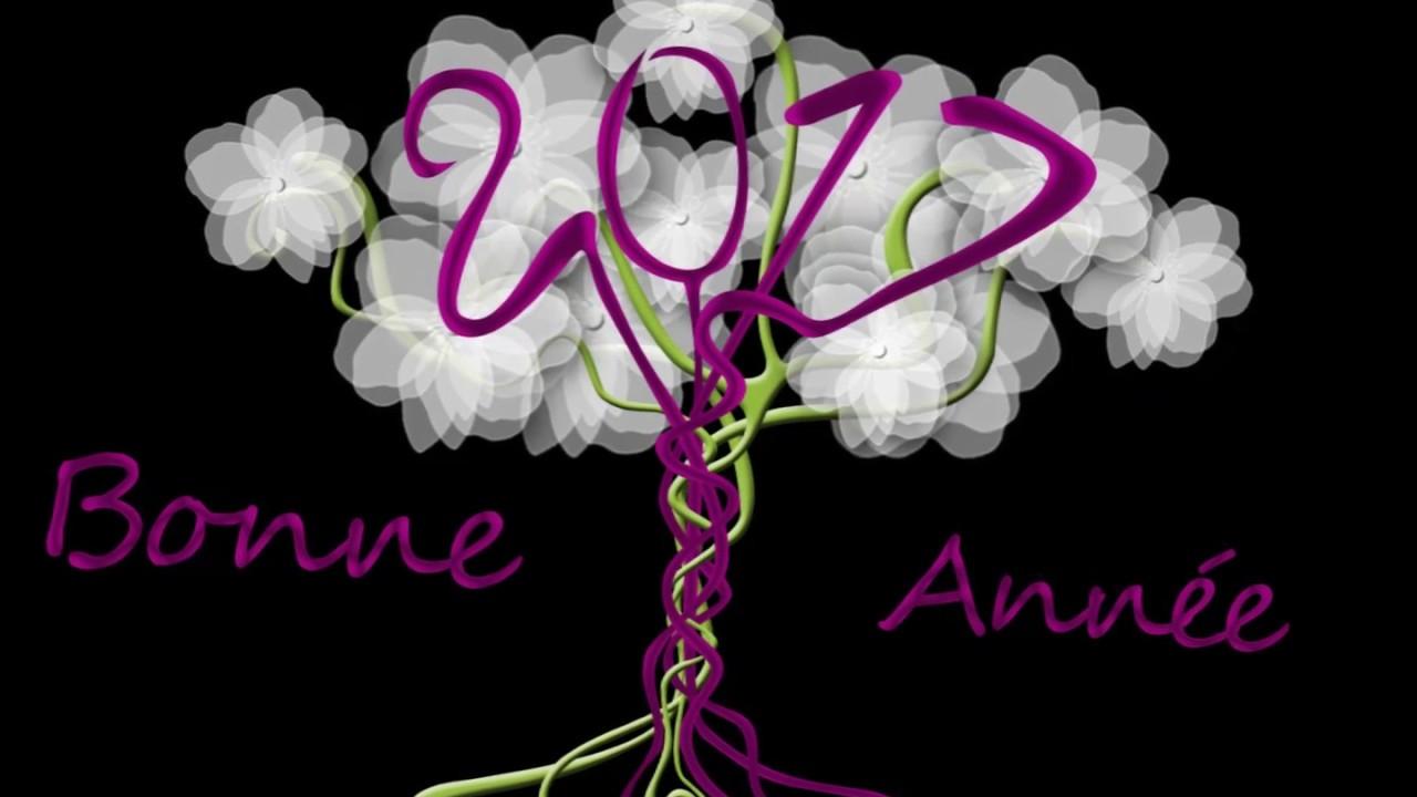 Extrêmement Bonne année 2017 - Meilleurs voeux 2017 - Carte de voeux année  JZ47