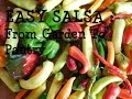 Homemade Salsa: From My Off Grid Kitchen