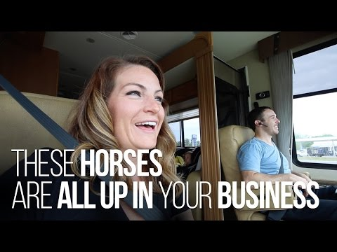 RV Living at Assateague Island State Park & the Wild Horses