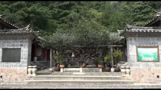 The Yufeng temple (Lijiang - Yunnan - China)