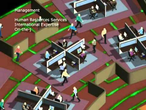 AMIRAL Management Corporation - SOKHNA PORT Project