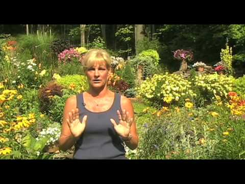 Gardening Inspirations A Garden Tour with White Flower Farm