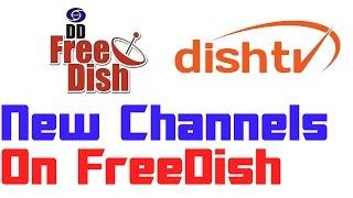 Channels Added On DD FreeDish | Dish TV FTA Added Some Channels