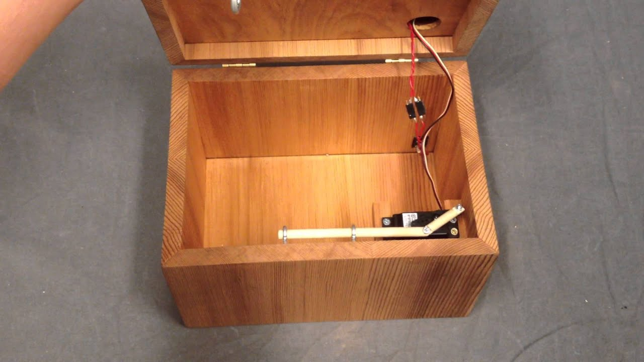 Heidi Peterson Fingerprint Lock Box
