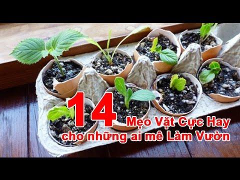 14 Mẹo Vặt Cực Hay cho những ai mê Làm Vườn