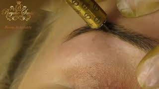 Microblading, Feather (Full Procedure) - Brydie Smith Brows & Artistry, Vid #3