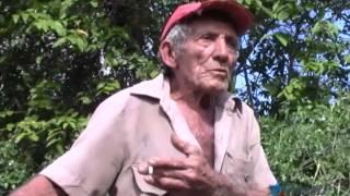 Regulación en Cuba multa a propietarios que sufran el robo de una res