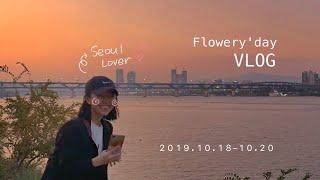vlog 꽃날 _ 서울브이로그, 을지로 힙지로, 서울구…