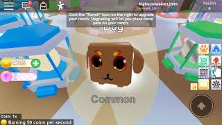 KS*am back and with a new roblox acount