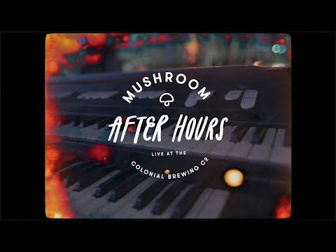 Mushroom After Hours: The Teskey Brothers perform 'Hold Me'