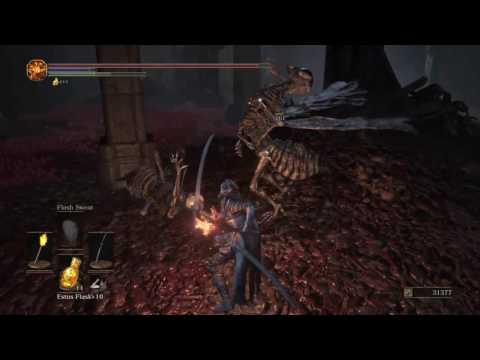 Ashes of Ariandel DLC |
