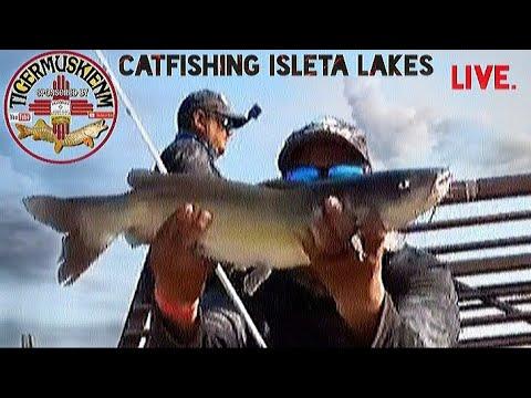 Catfishing Isleta Lakes Live
