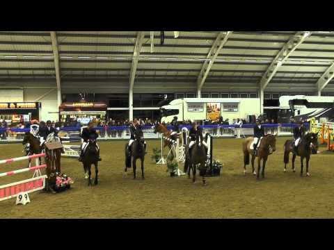 Nigel Coupe | AW Jenkinson Grand Prix | Aintree International Equestrian Centre