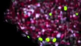 Big Ten Conference Football 2012 Season Hype Video
